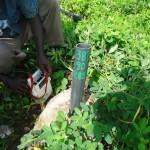 Forage uranifère dans un champ d'arachide